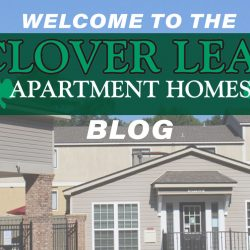 Clover Leaf Apartment Homes blog