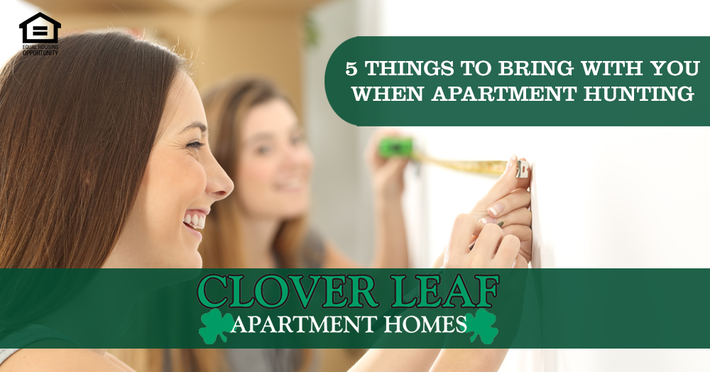 things to bring with you when apartment hunting