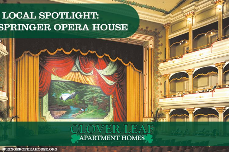 Local Spotlight: The Springer Opera House